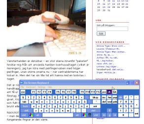 Skärmdump från Annica Tigers blogg